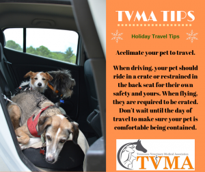 holiday travel with pets
